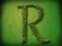 RONALDO'S LANDSCAPE SERVICES logo