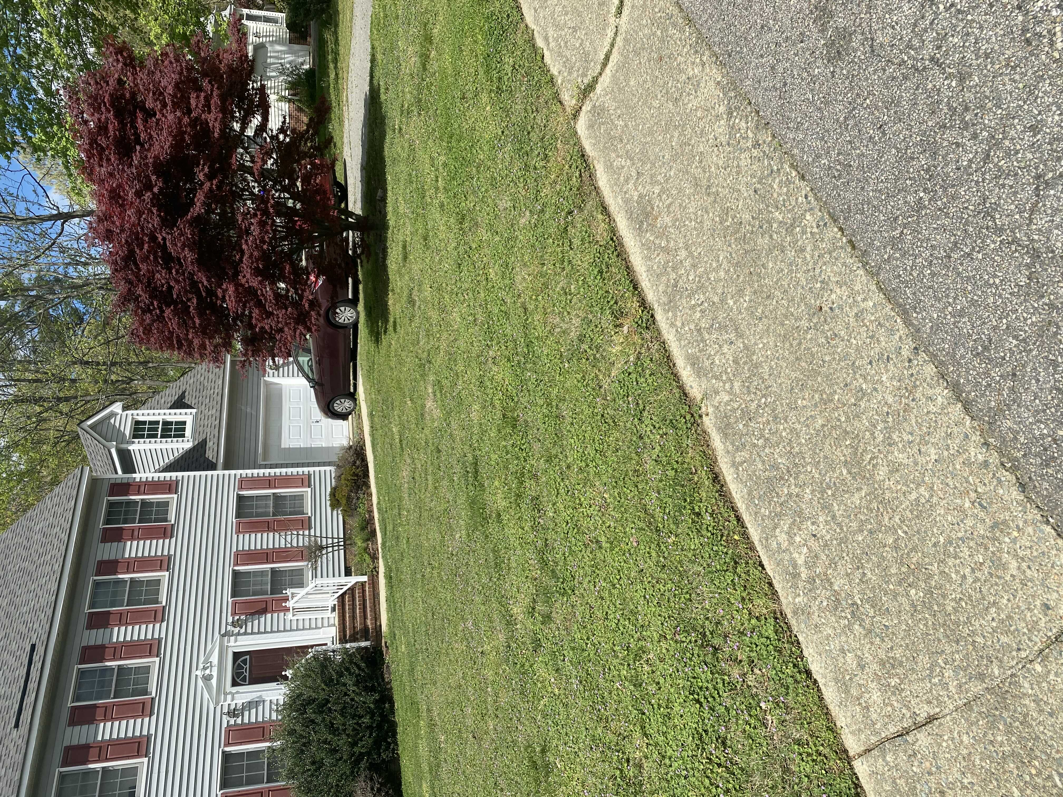 Lawn and Yard Work Project