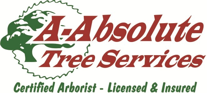 A-Absolute Tree Services logo