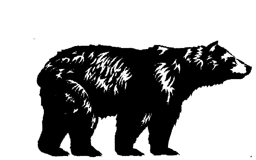 Black Bear Builders logo