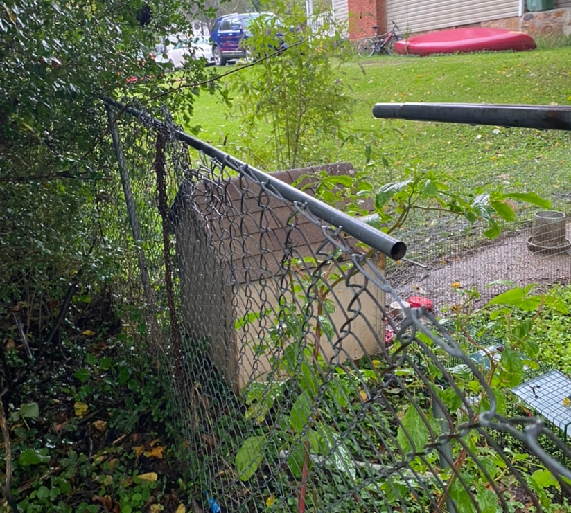 5ft H 58ft W chain link fence repair