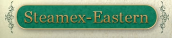 Steamex-Eastern of Toledo logo