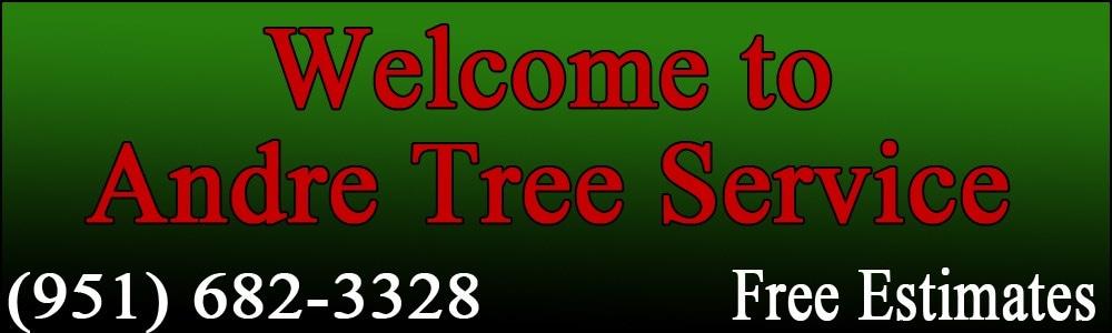 Andre Tree & Palm Service. 951 682-3328 logo