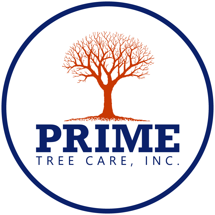 Prime Tree Care, Inc. logo