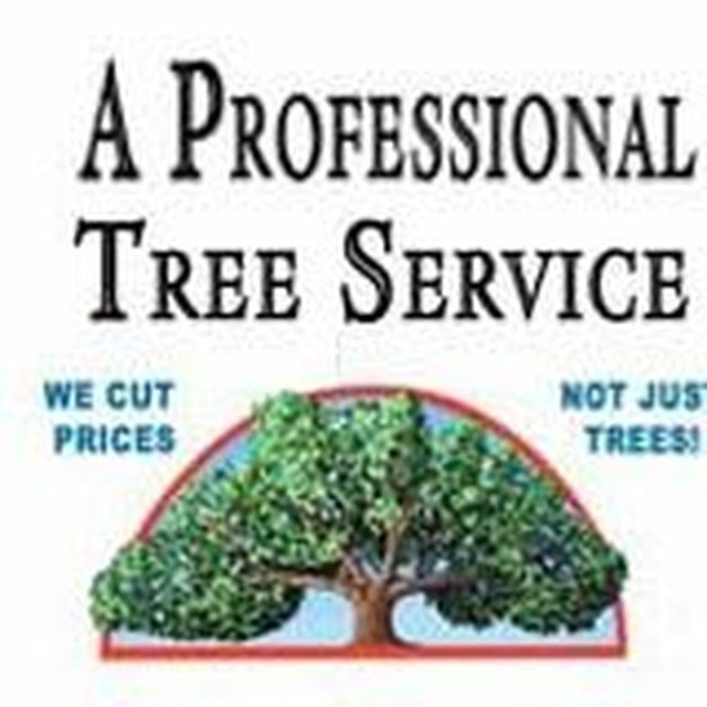 A Professional Tree Service logo