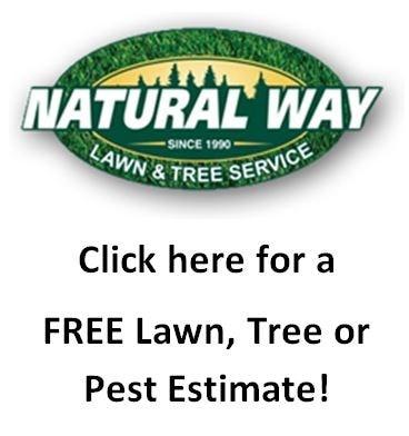 Natural Way Lawn & Tree Service logo