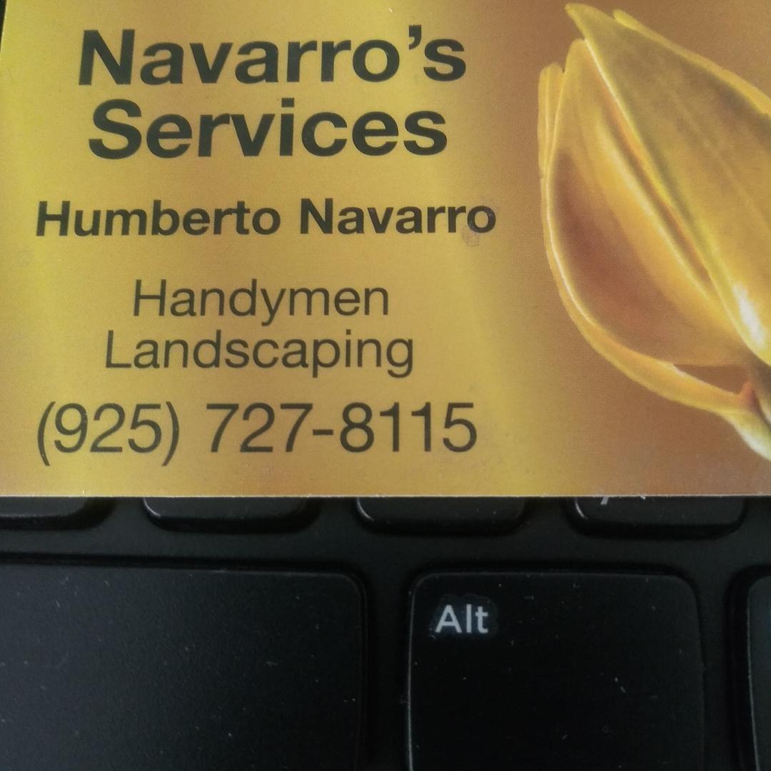 Navarro's Services logo