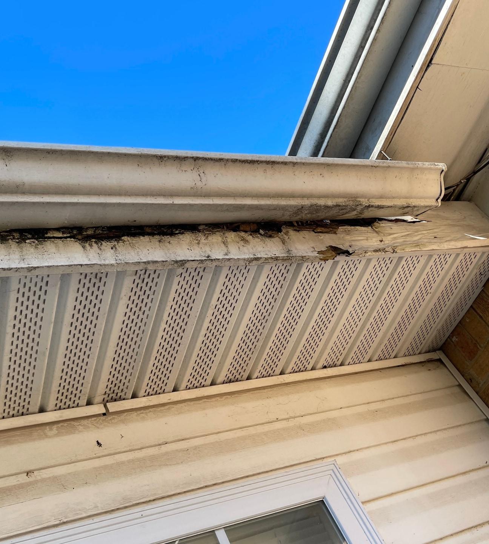 5 inch seamless aluminum gutter install, fascia/soffit replace