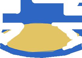 Nexgen Windows & Doors LLC logo