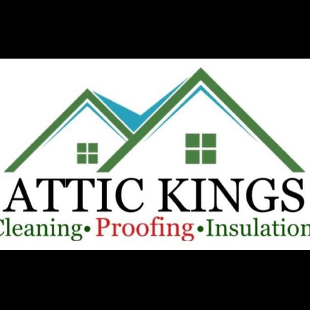 Attic kings logo