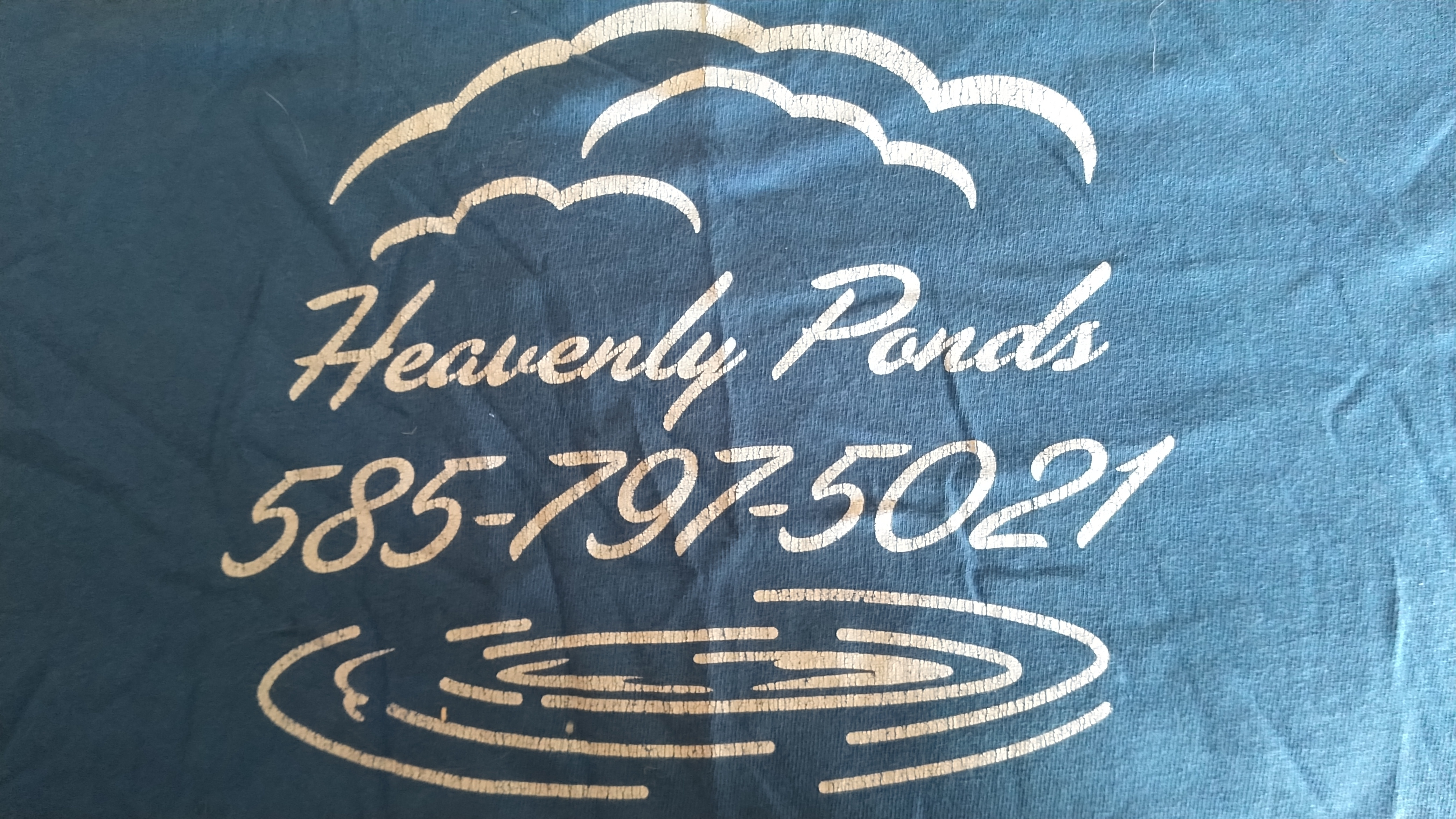 Heavenly Ponds Landscaping and Maintenance logo