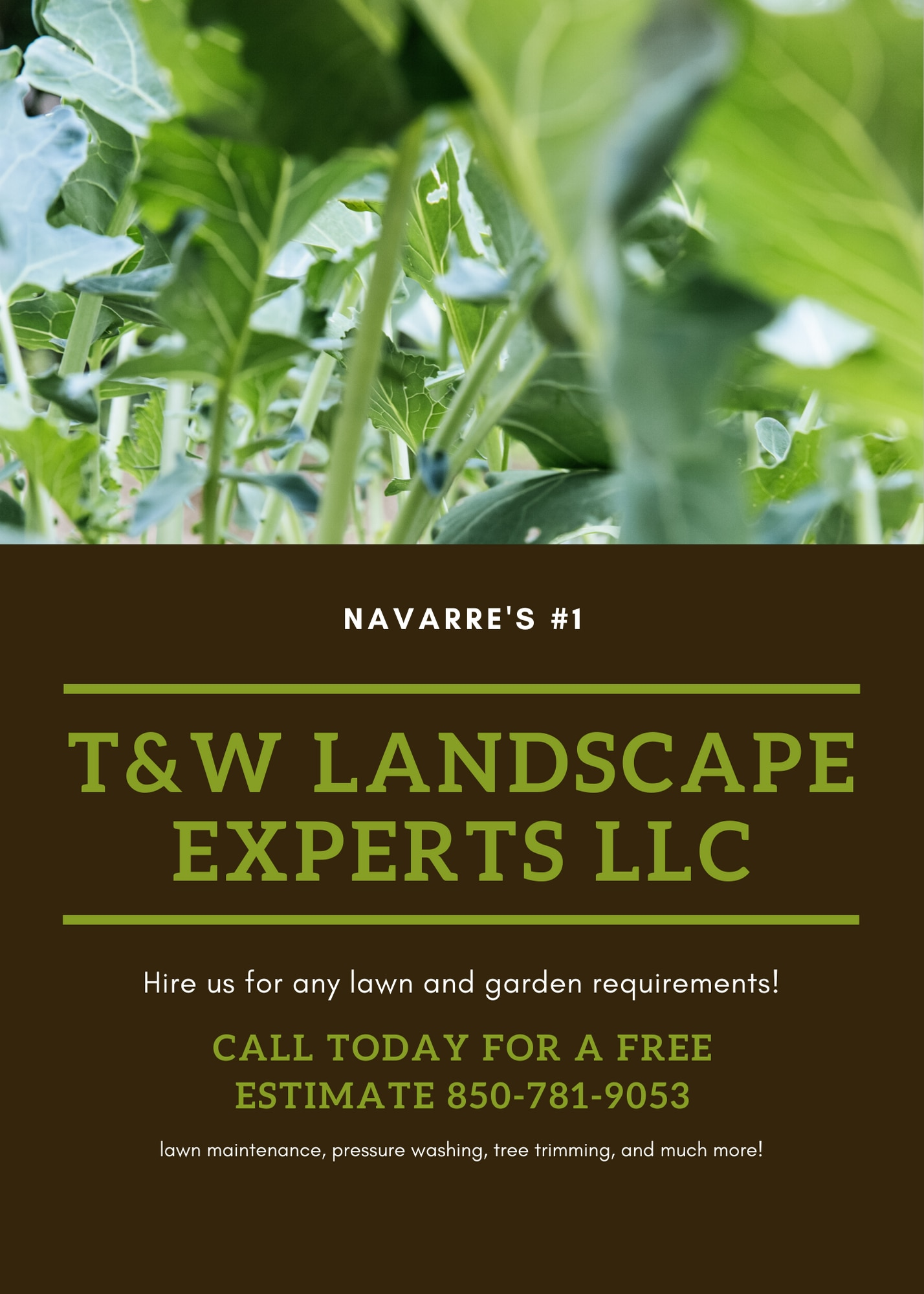 T and W LANDSCAPE EXPERTS  logo