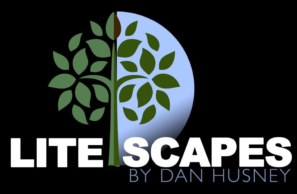 Litescapes by Dan Husney LLC logo