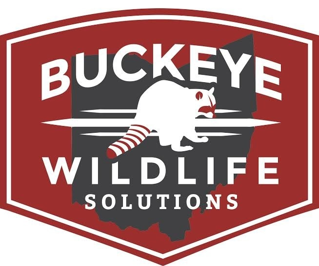 Buckeye Wildlife Solutions logo