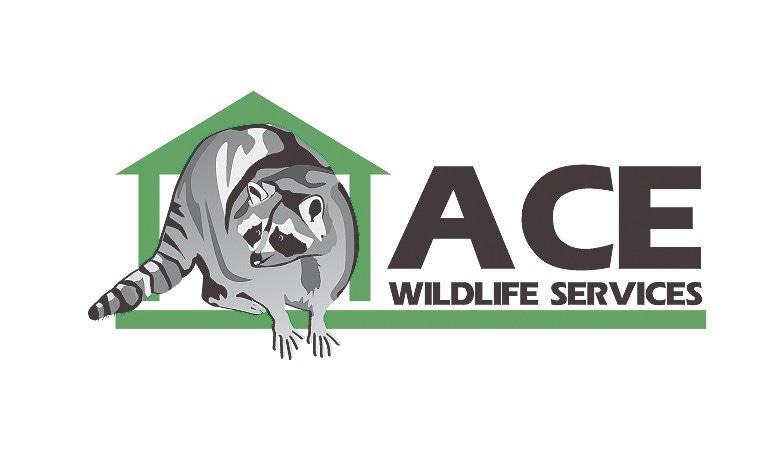 Ace Wildlife Service logo