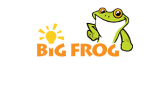 Big Frog Electric logo