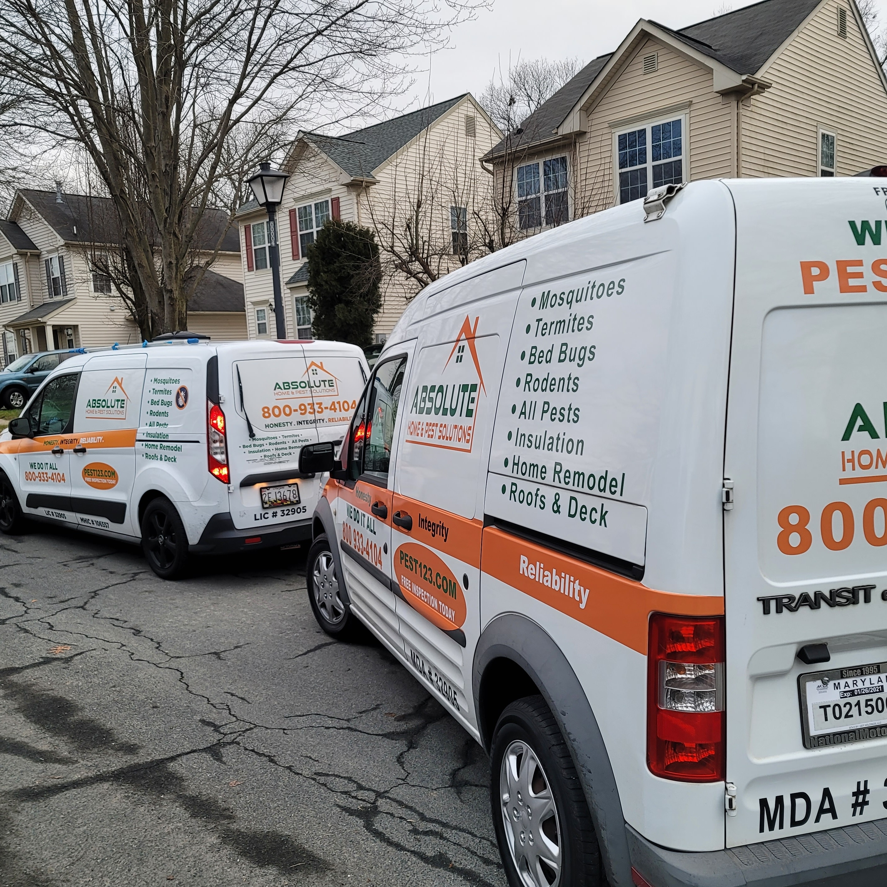 Absolute Home and Pest Solutions  logo