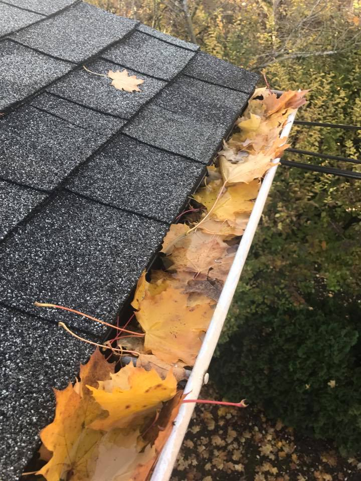 Gutter Cleaning / Clogged Downspout