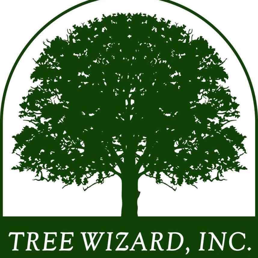 Tree Wizard logo