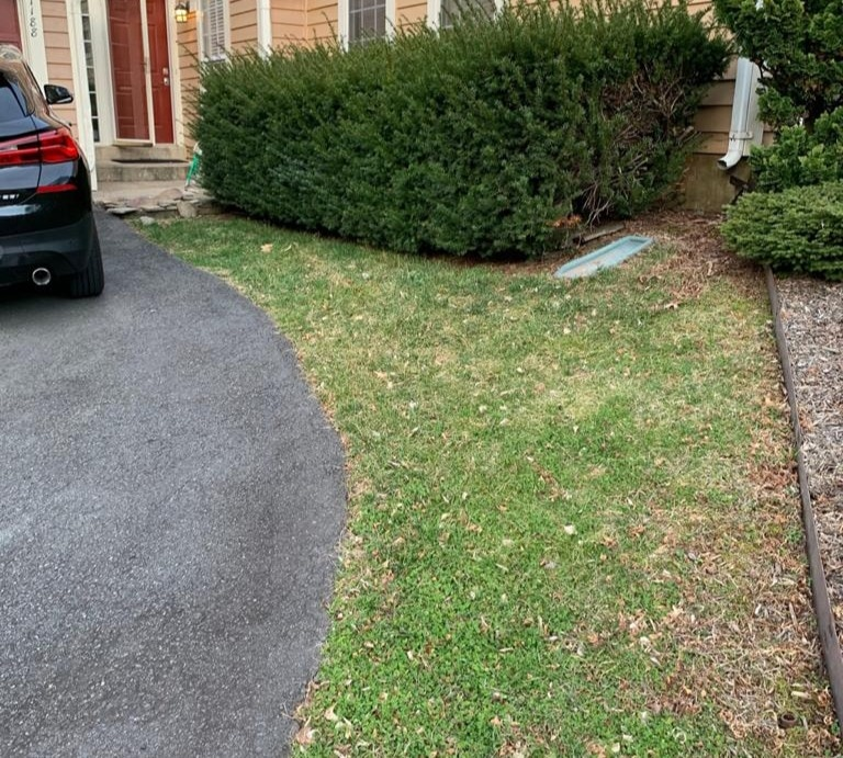 Before & After - Sod Installation