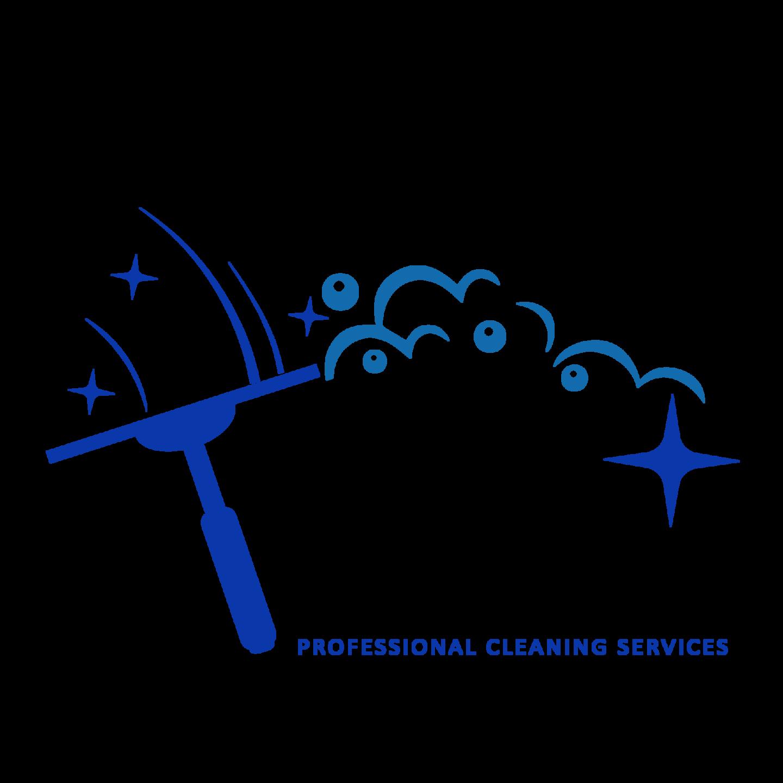 CTM WINDOW CLEANING logo