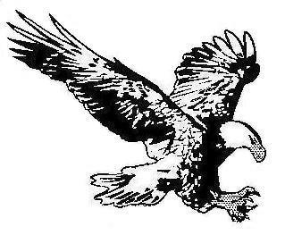A Graf & Son LLC logo