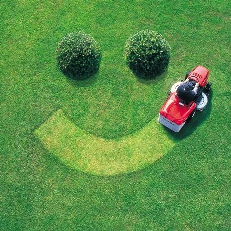 Create My Lawn LLC logo