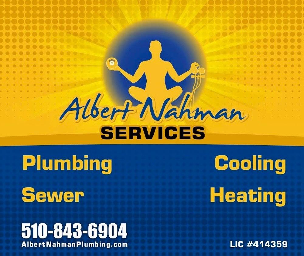 Albert Nahman Services logo