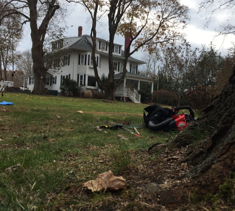Yard, Berm or Garden Cleanups and Makeovers