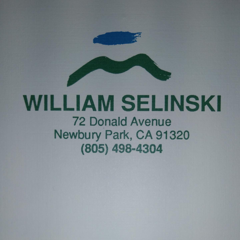 William Selinski Custom Painting logo