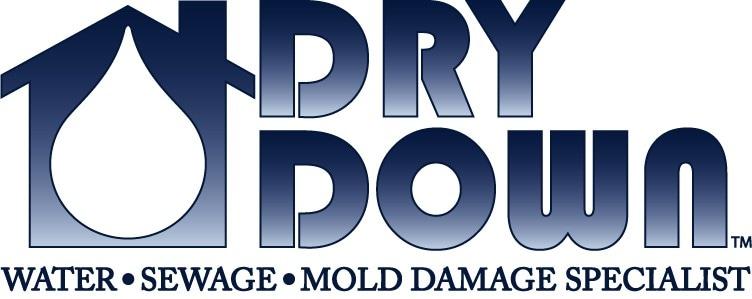 Dry Down Inc logo