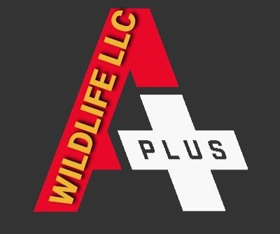A Plus Wildlife logo
