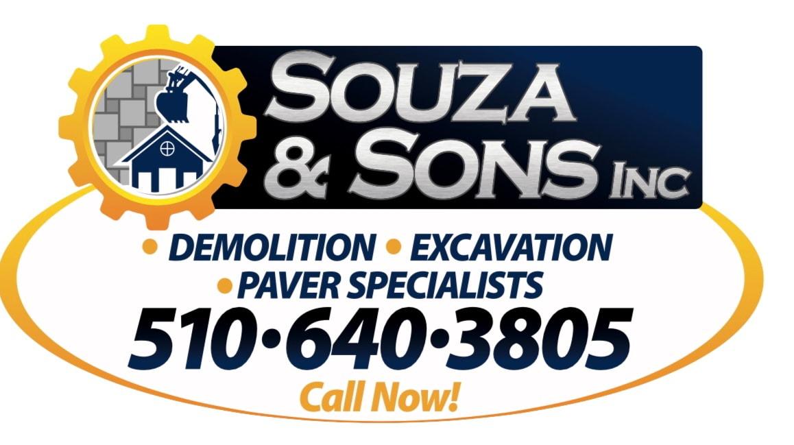 Souza & Sons Inc logo