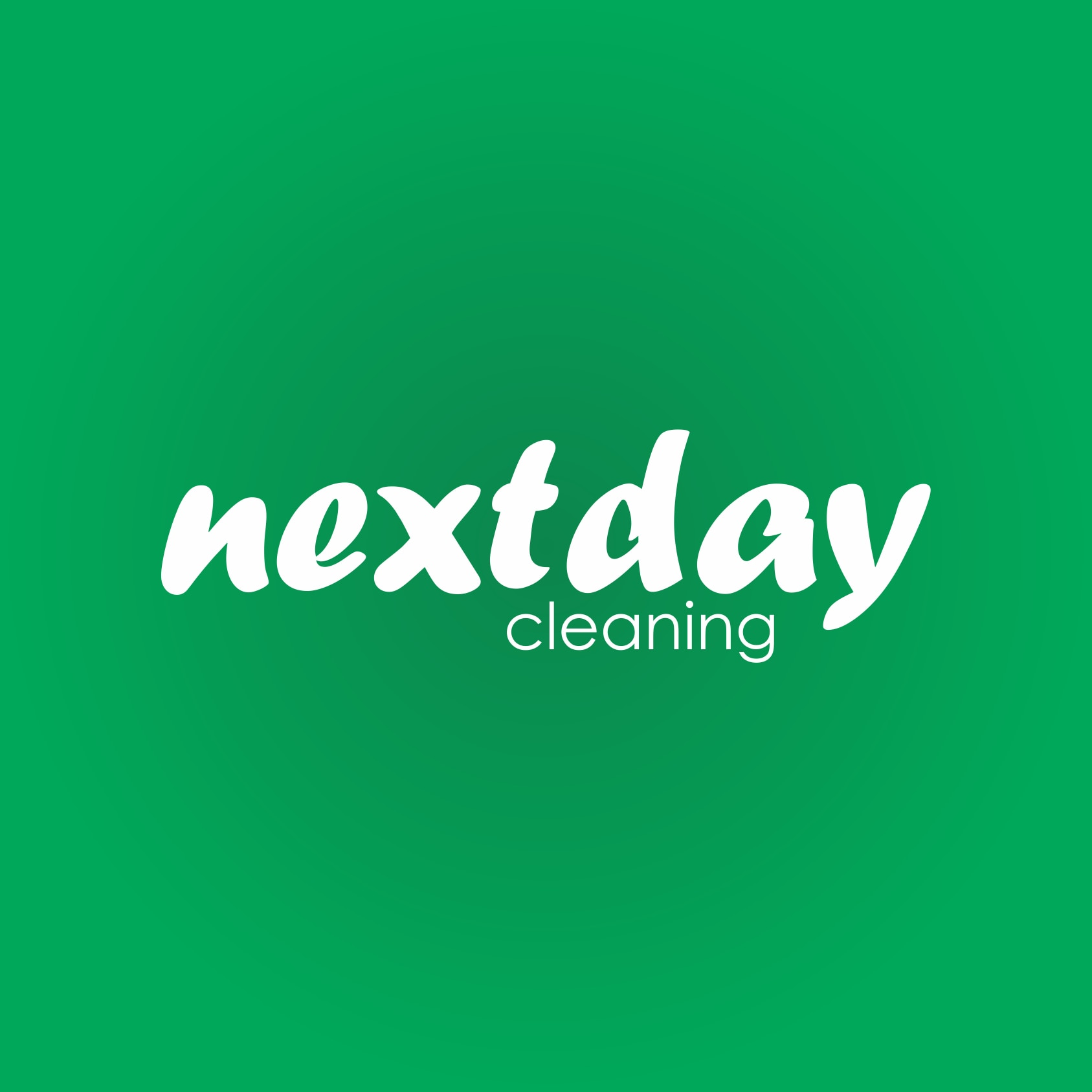 Next Day Cleaning Service logo