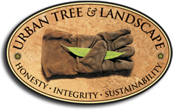 Urban Tree & Landscape logo