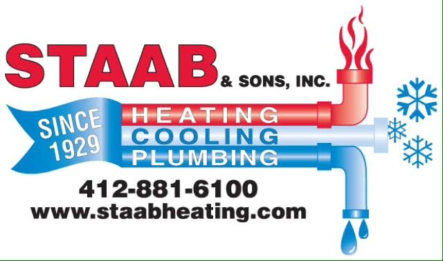 STAAB & SONS INC logo
