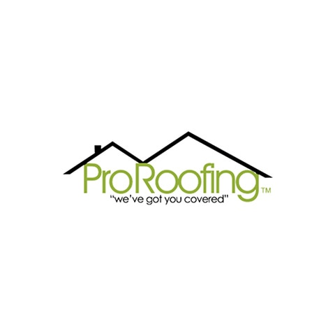 Pro Roofing NW logo