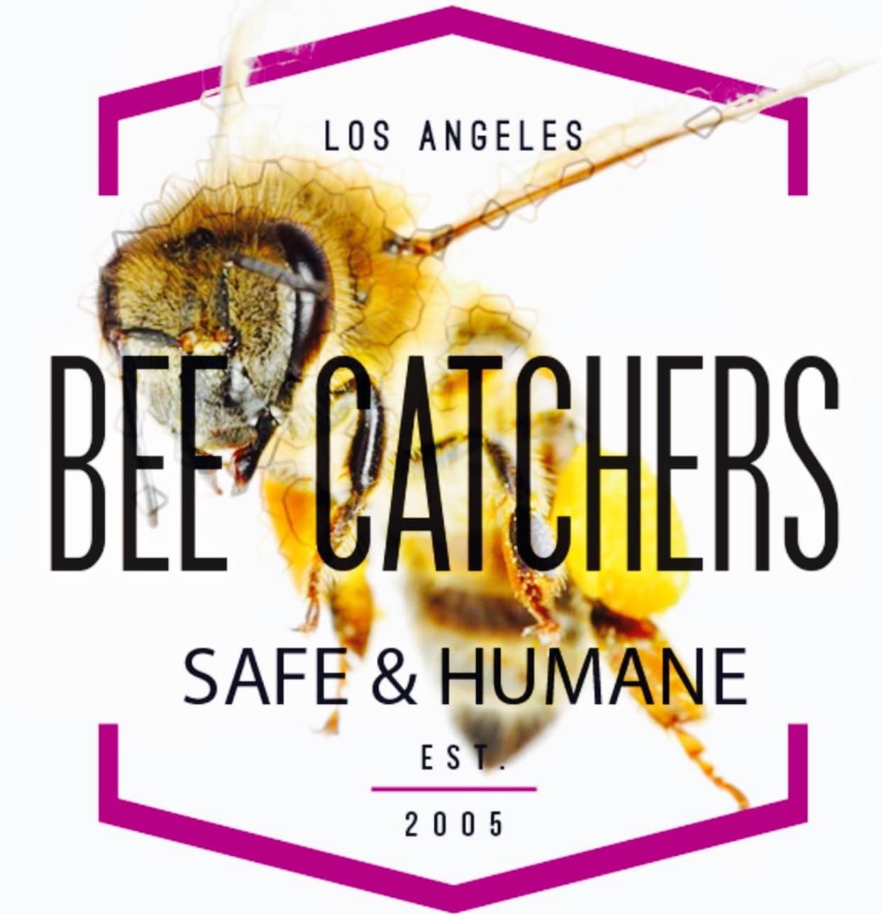 Bee Catchers Inc. logo