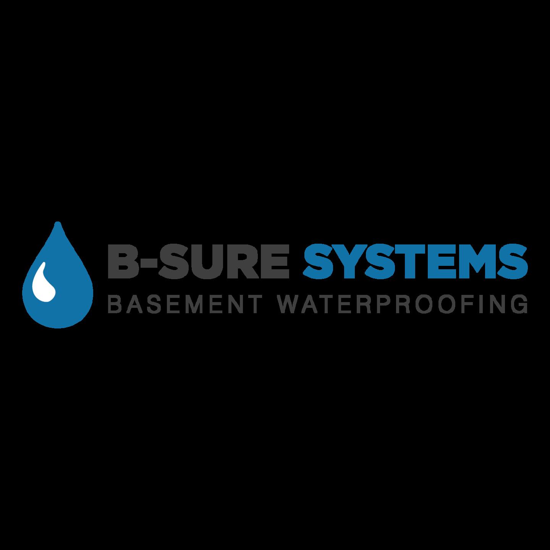B-Sure Systems Inc logo
