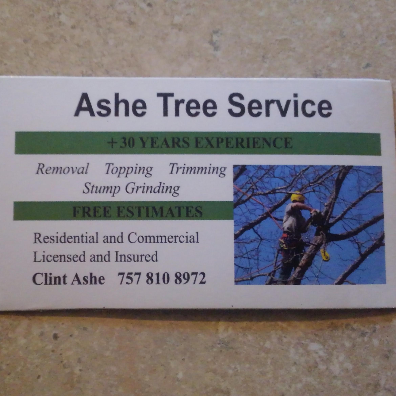 Ashe Tree Service logo