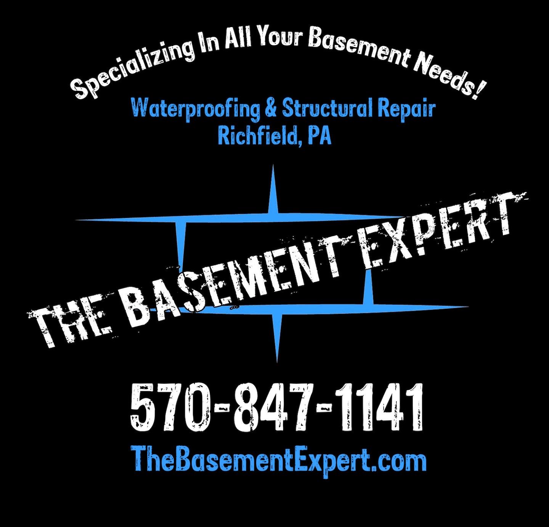The Basement Expert  logo