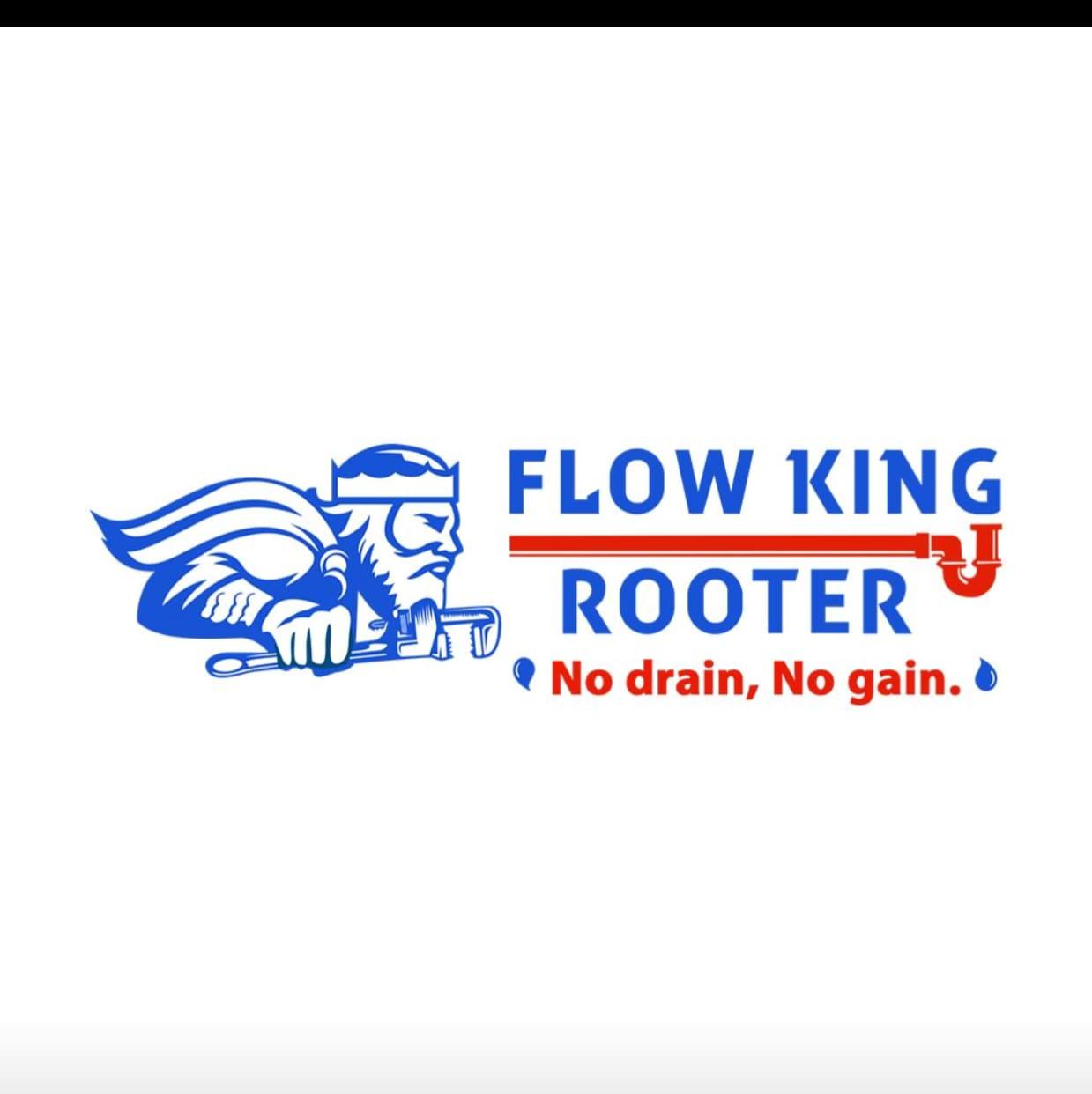 Flow King Rooter logo