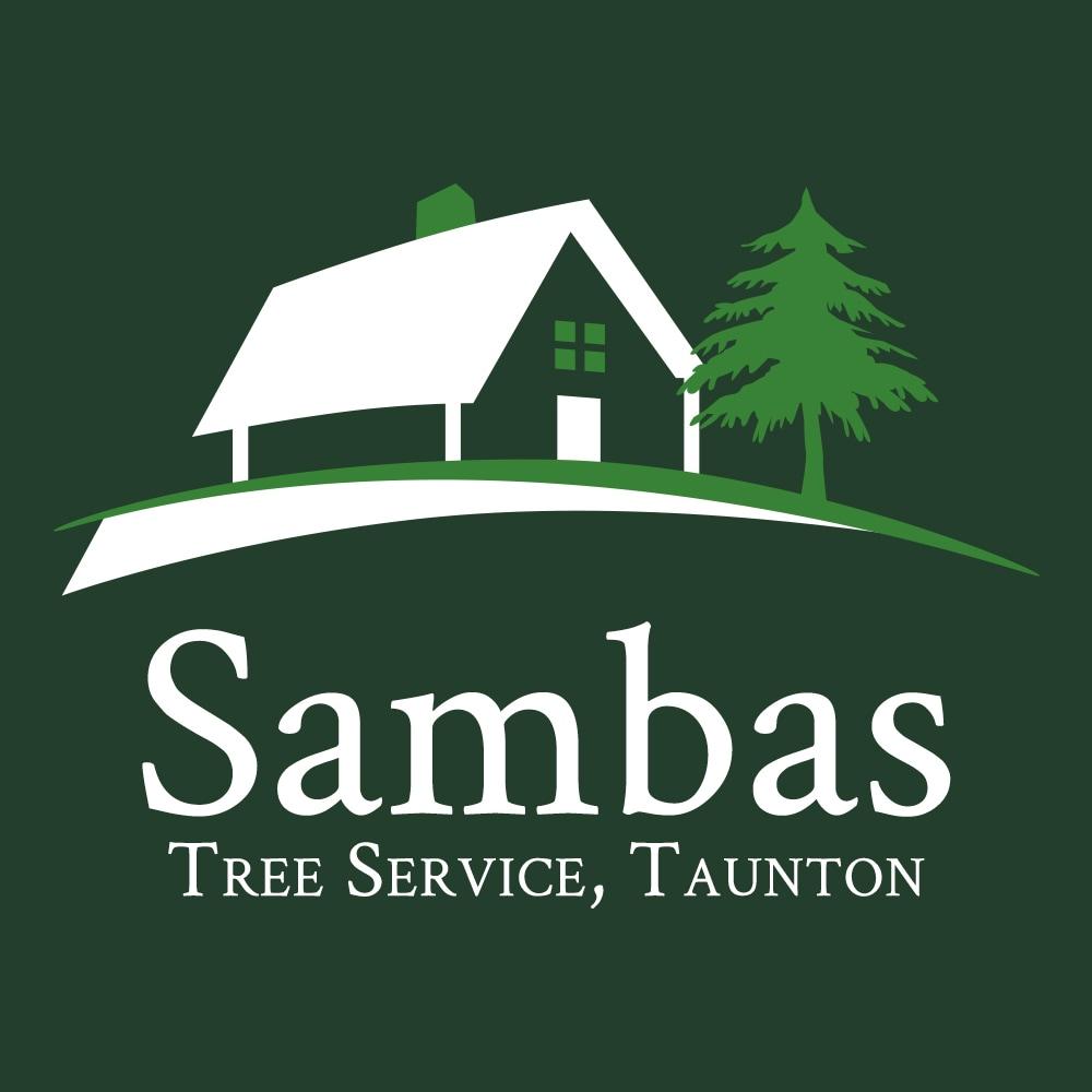 SAMBAS GENERAL CONSTRUCTION INC. logo