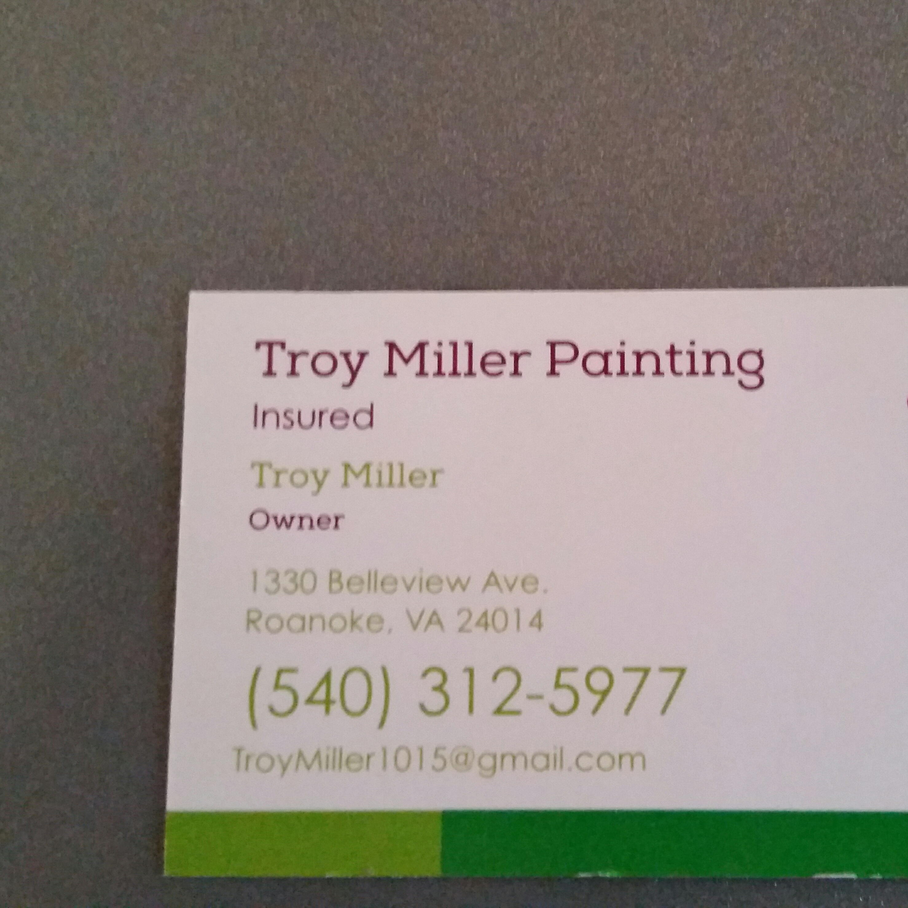Troy Miller Painting logo