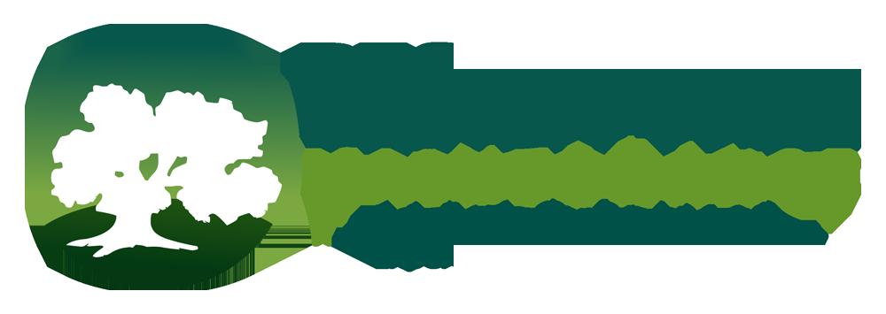 Design Tree Maintenance Inc logo