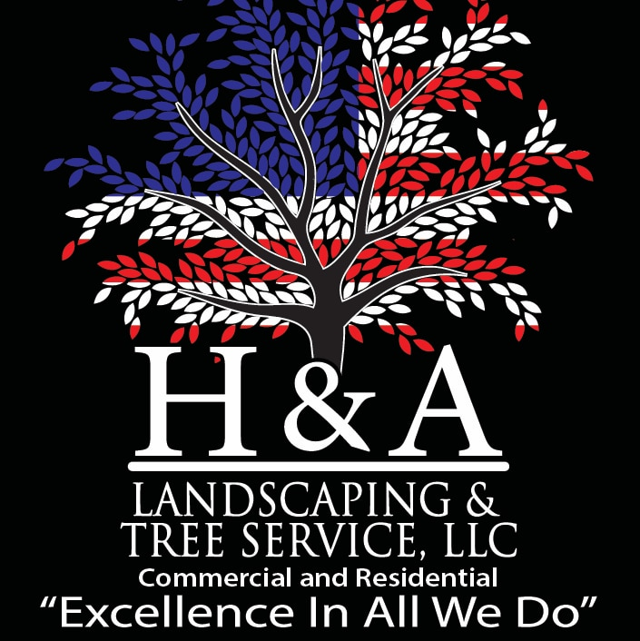 H & A Landscaping And Tree Service LLC logo