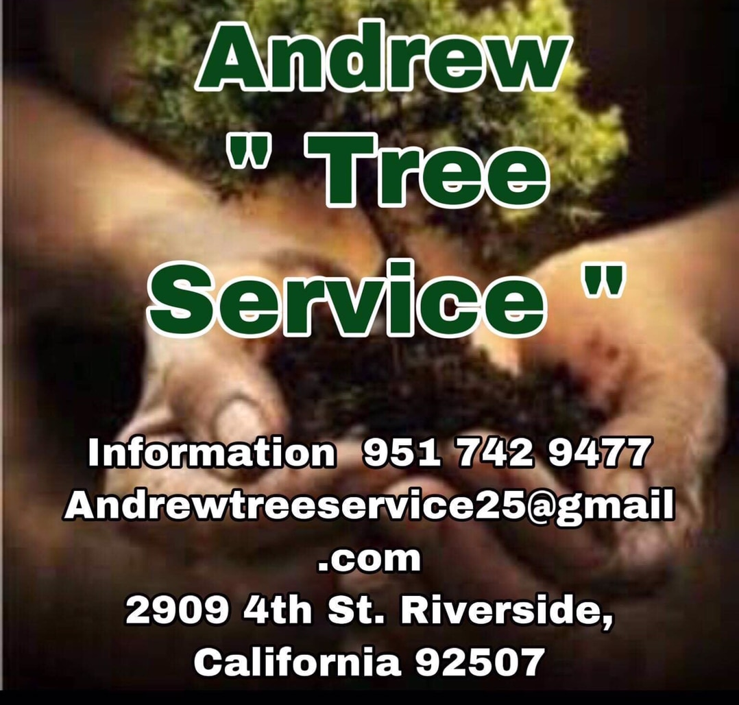 Andrew Tree Service and Landscaping logo